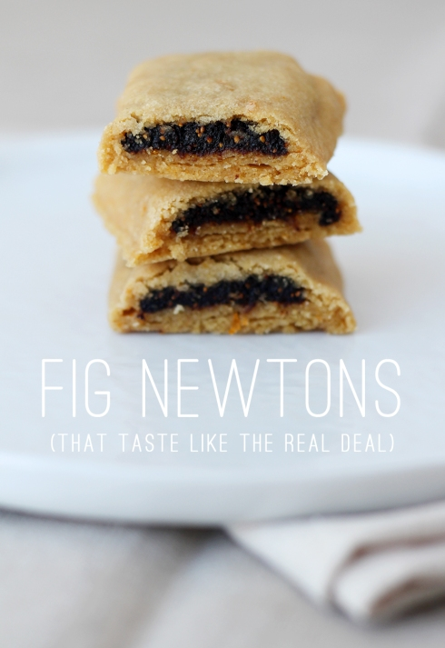 Fig Newtons2