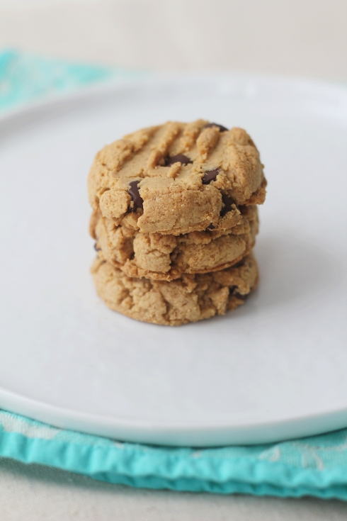 Peanut Butter Chocolate Chip Biscuits2