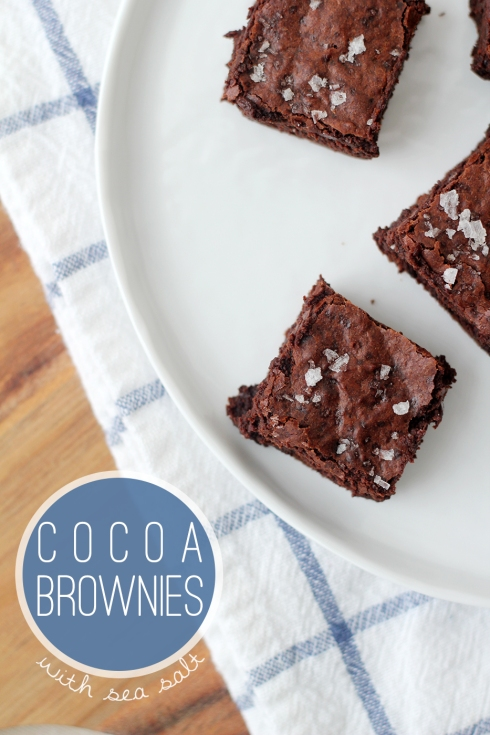 Cocoa Brownies2